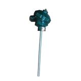 WZPK2-336双支铠装热电阻